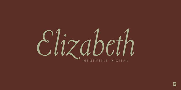 Imagen de la tipografía creada por Elizabeth Friedlander
